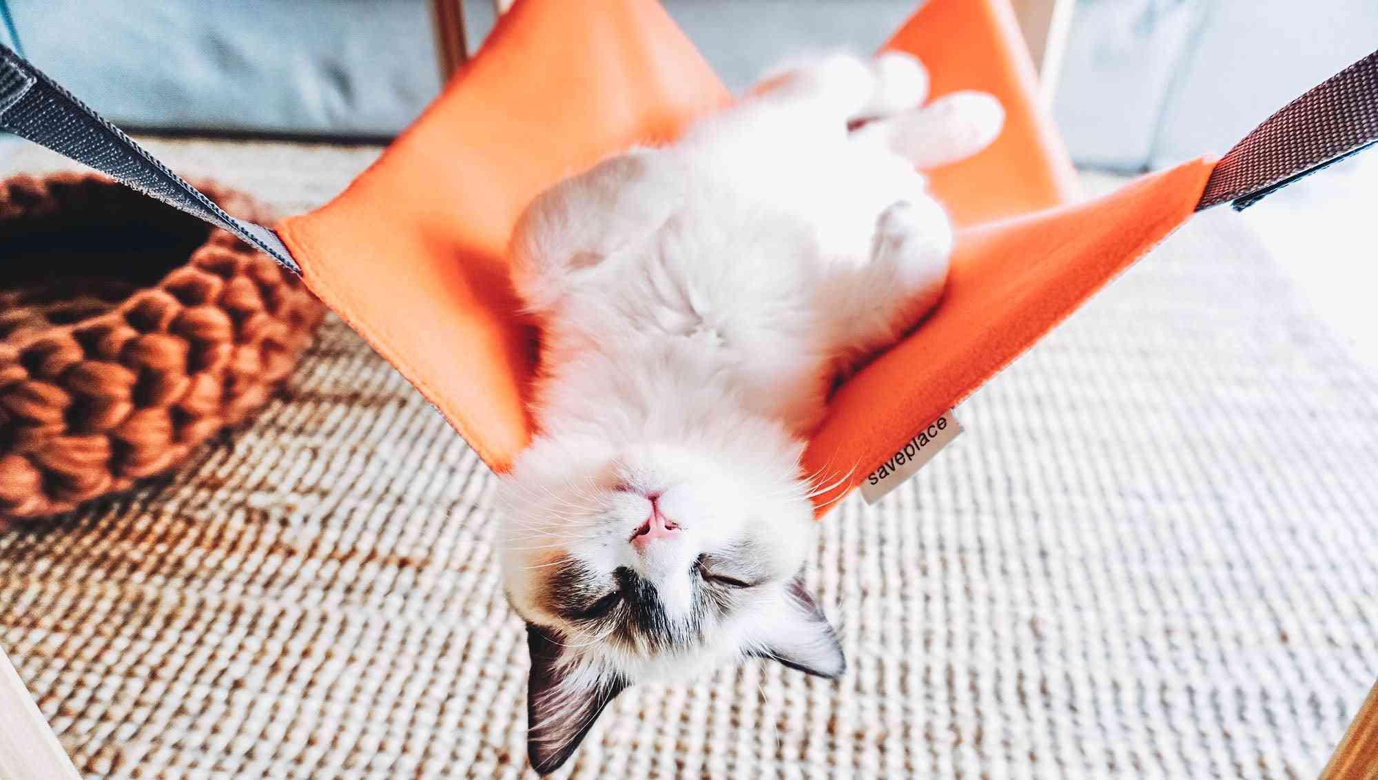 Juicy Orange Saveplace® Hammock For Storage & Pets, Fleece