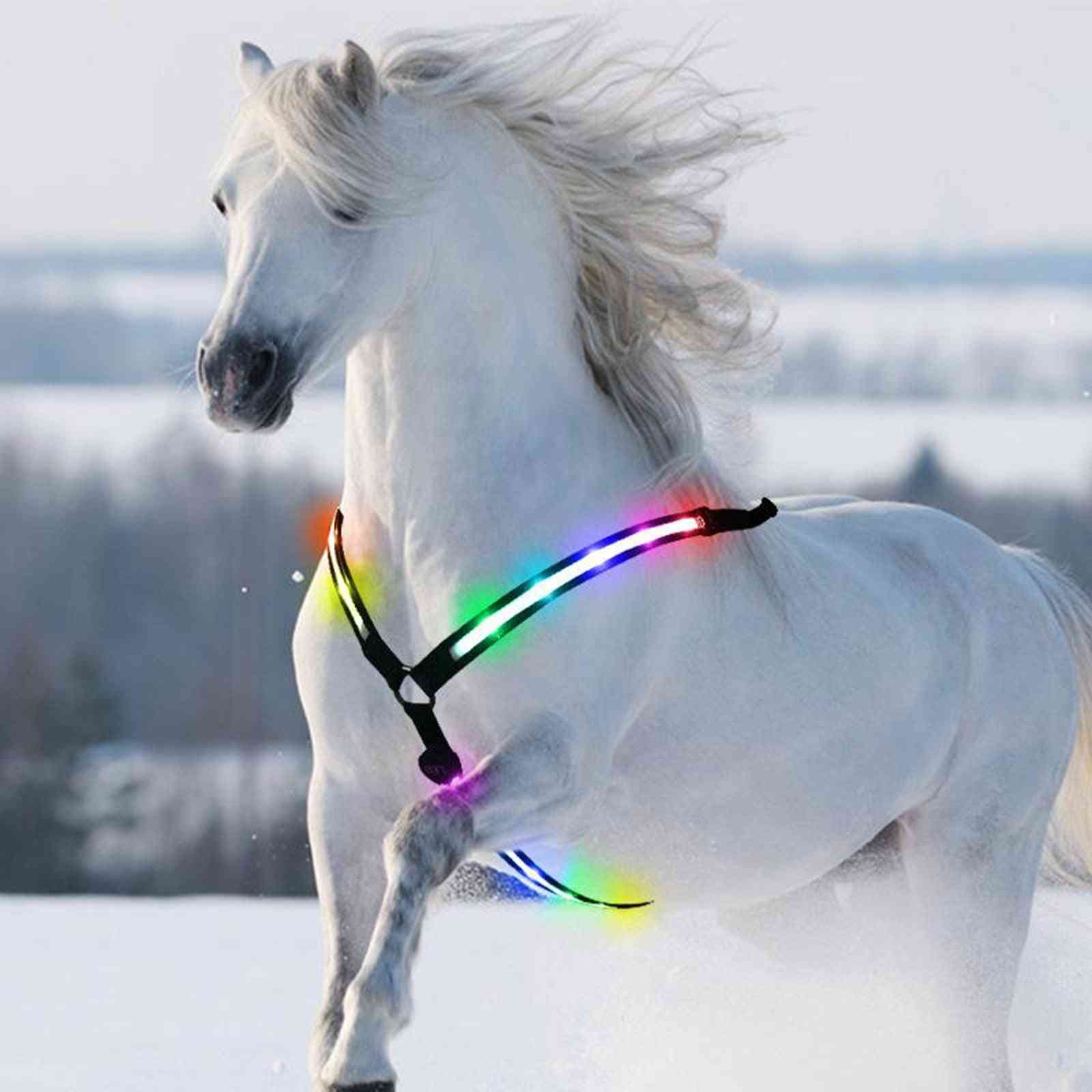 Led Horse Breastplate Collar