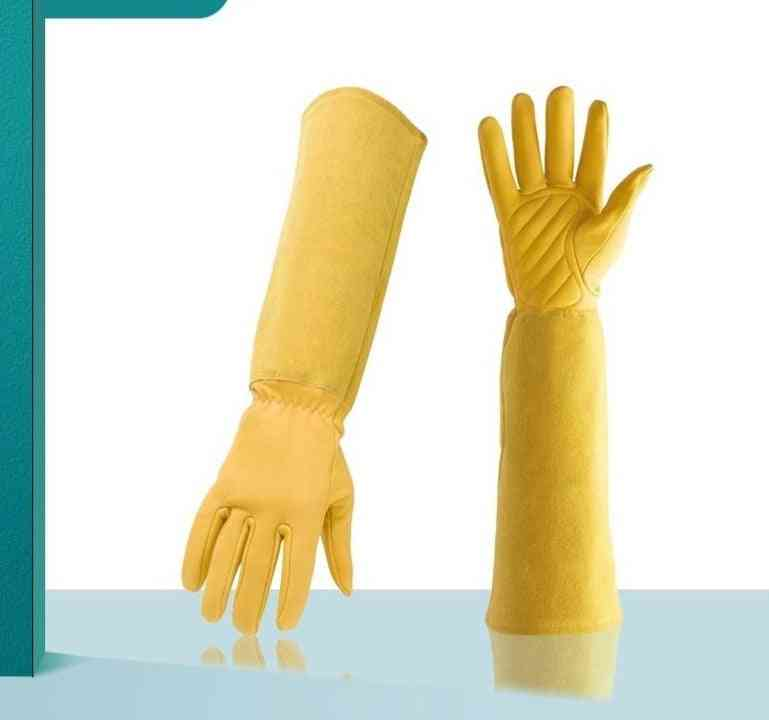Gardening Gloves Professional Rose Trim And Cut Protection Gloves