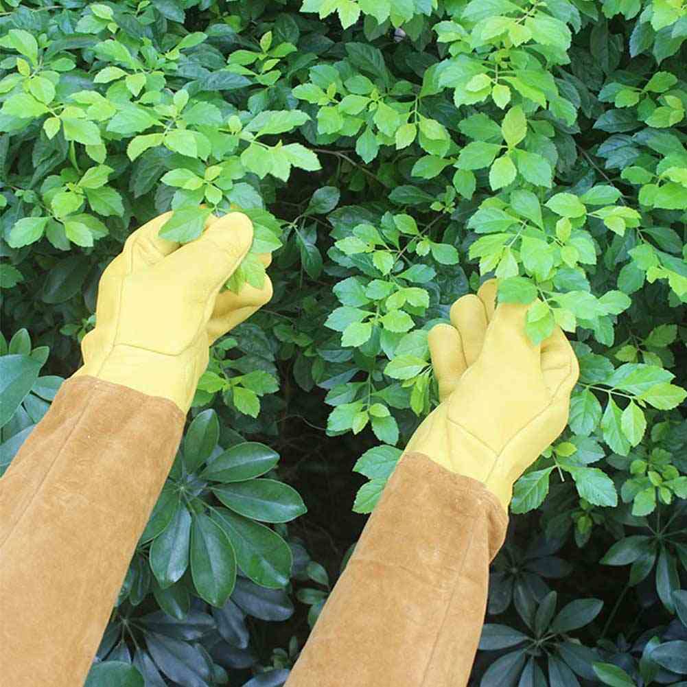 Protective Non Slip Long Sleeve Gloves