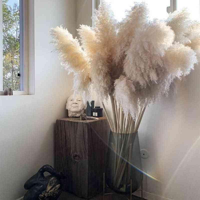 Natural Reed Dried Flower, Big Pampas Grass Bouquet, Wedding  Ceremony Decoration, Modern Home Fall Decor