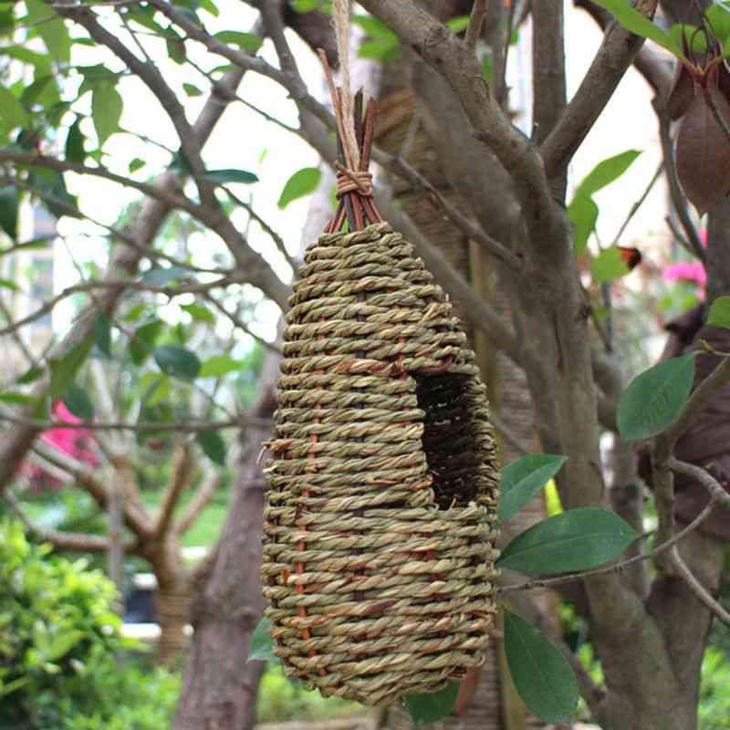 Natural Hanging Bird House