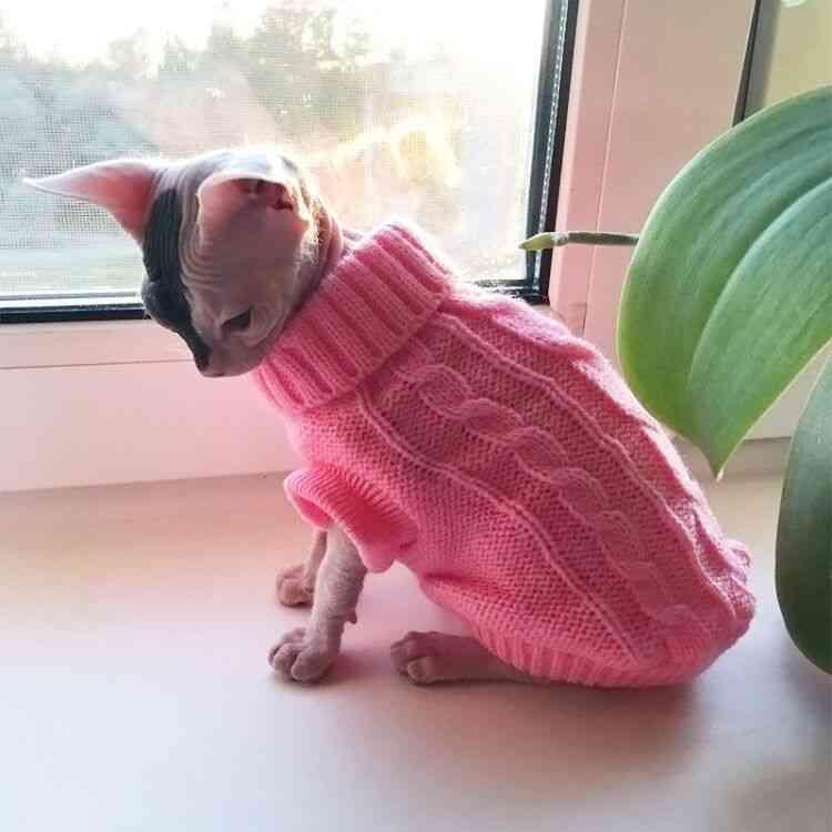 Cat Clothes For Pet Cats