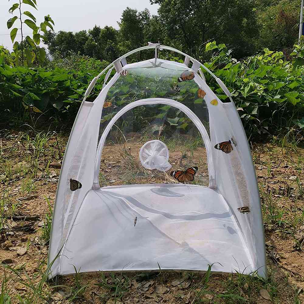 Outdoor Insect Mesh Cage Incubator