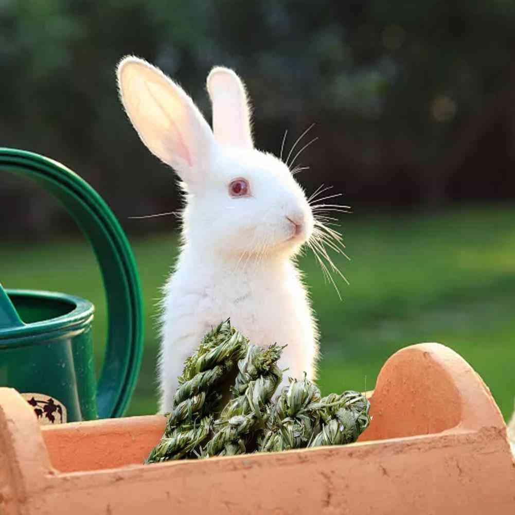 Timothy Grass Rabbit Chew Toy