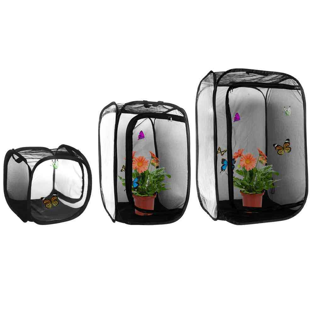Butterfly Cage Black Mini Insect Habitat