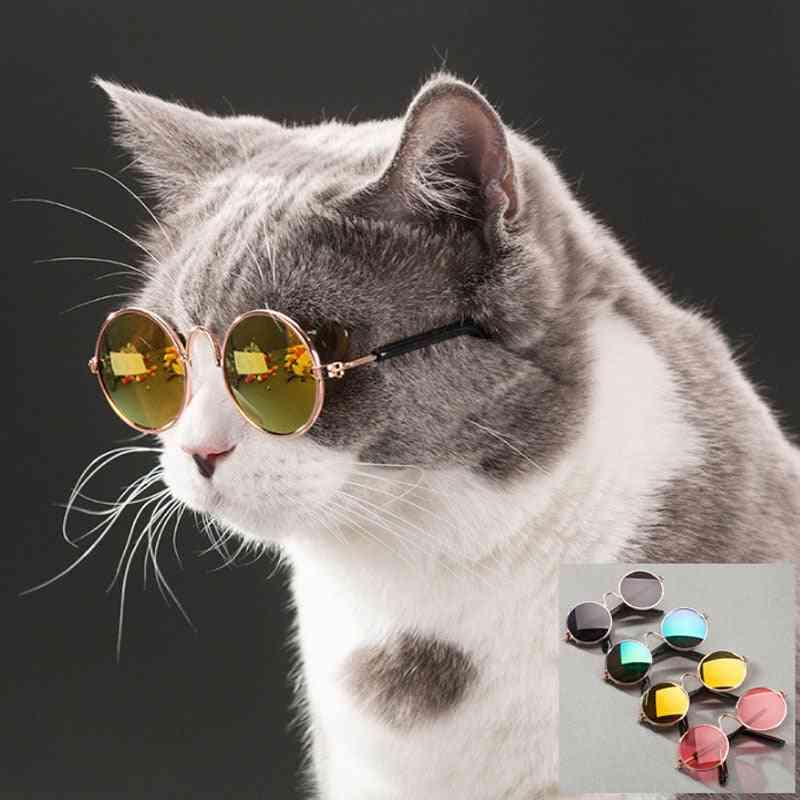 Pet Cat Glasses Dog Glasses