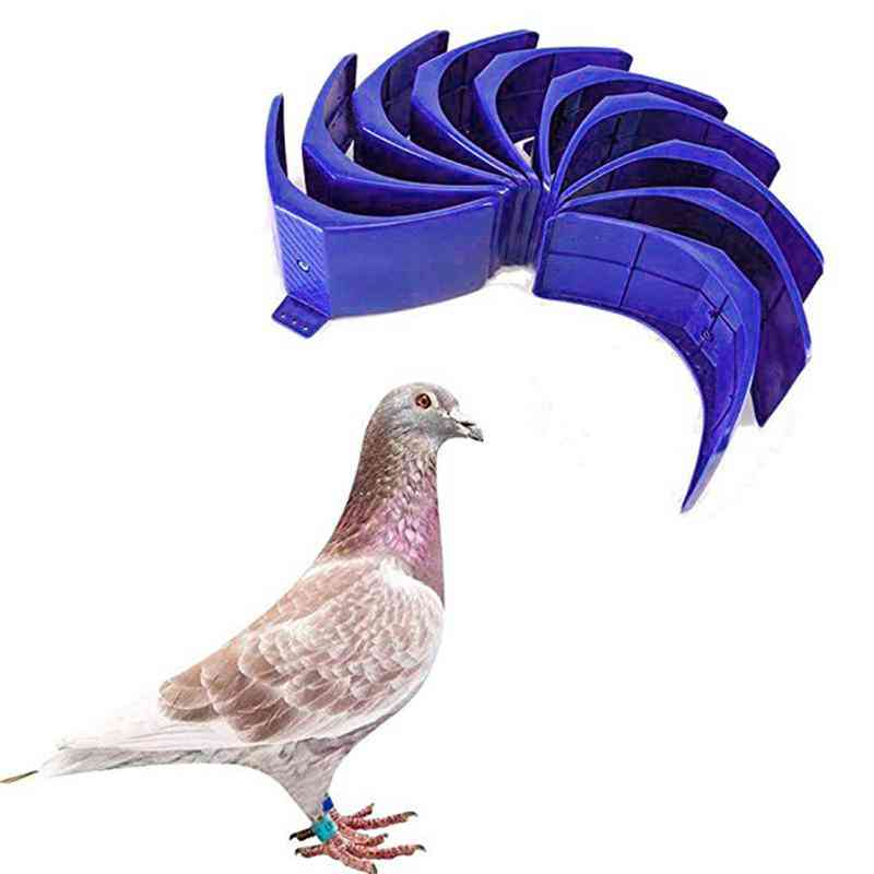 Plastic Pigeon Perch Dove Rest Stand Frame Grill