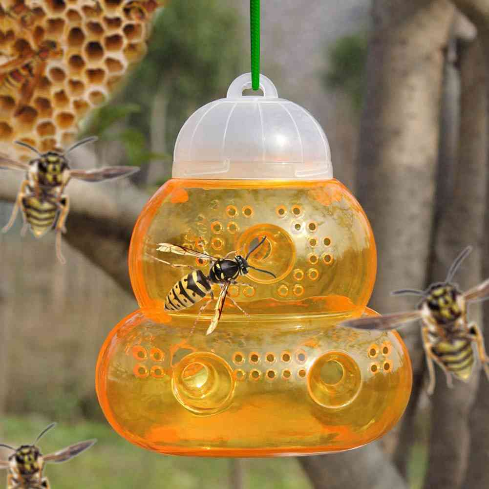 Bee Catcher Beehive Wasp Trap