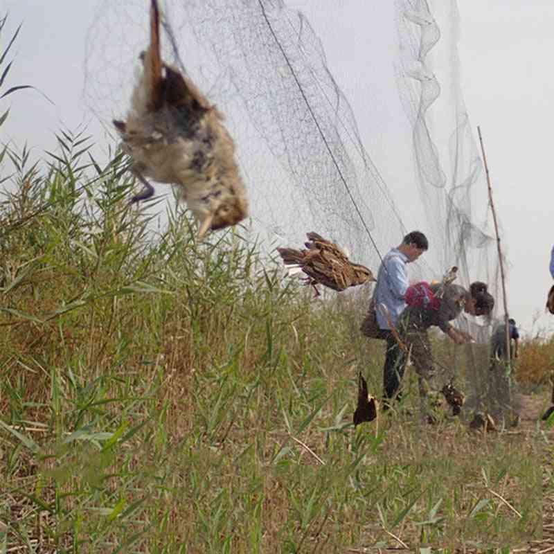 Anti Bird Netting Pond Green Net