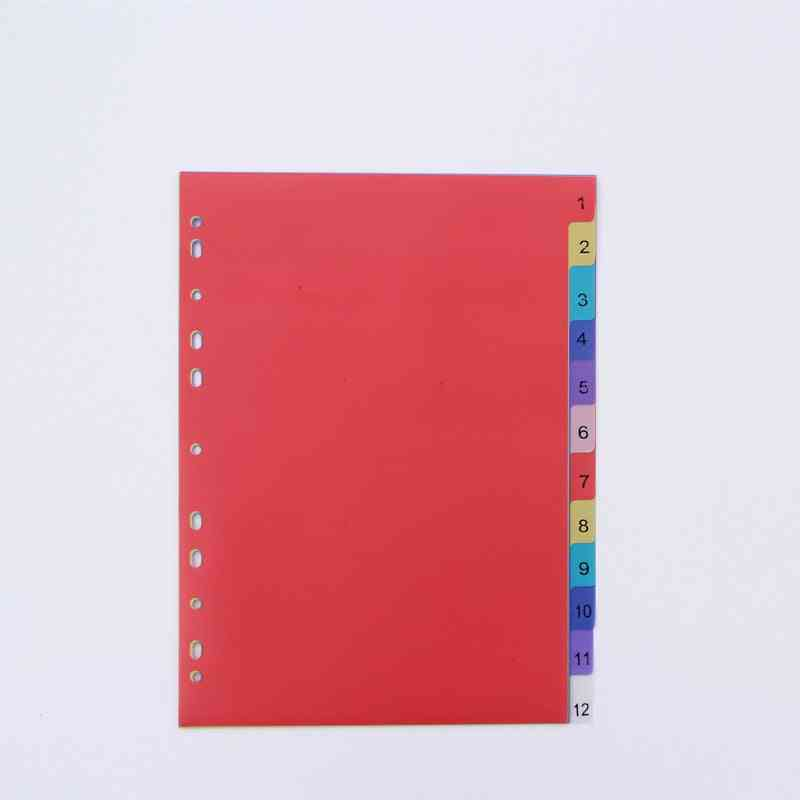 Colored Pp Binder Index Dividers, Office School Stationery Accessory, Spiral Month Divider Archives Files