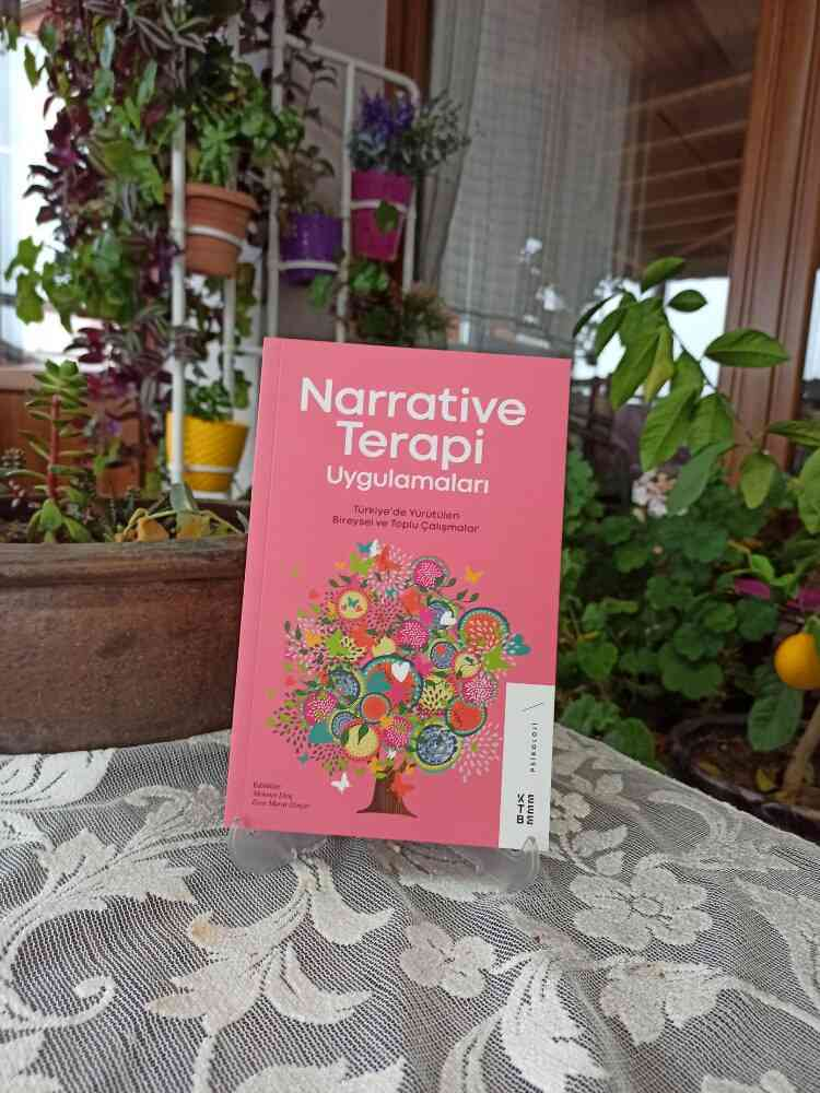 Best Book - Narrative Therapy Applications