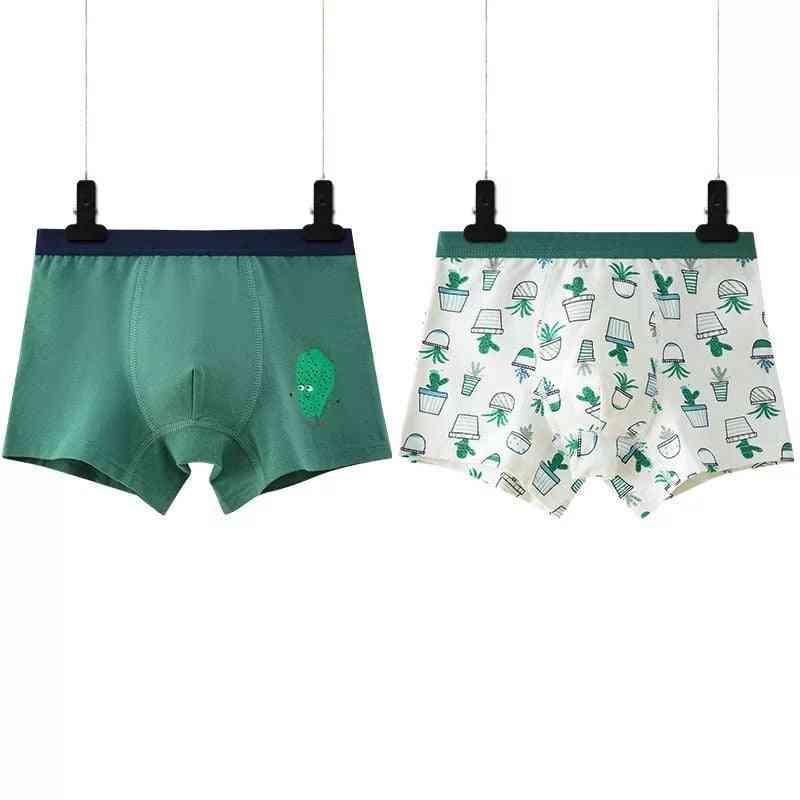 Boys Underwear Cartoon's Shorts Panties For Baby Boy Boxers Cotton