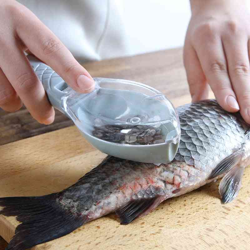 Fish Cleaning Tool Scraping